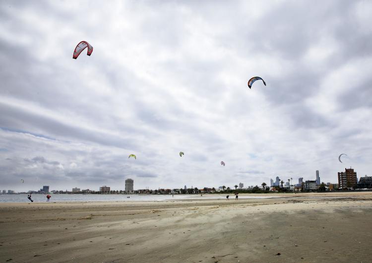 Kites on a beach
